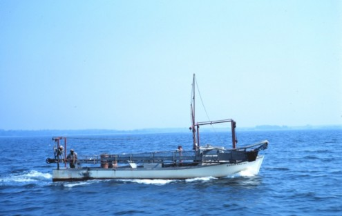 This clam dredger was underway in 1968 when this photo was taken by NOAA on the Chesapeake Bay.  Clam dredges still operate on the Patuxent.