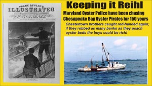 Keeping it Reihl oyster pirates