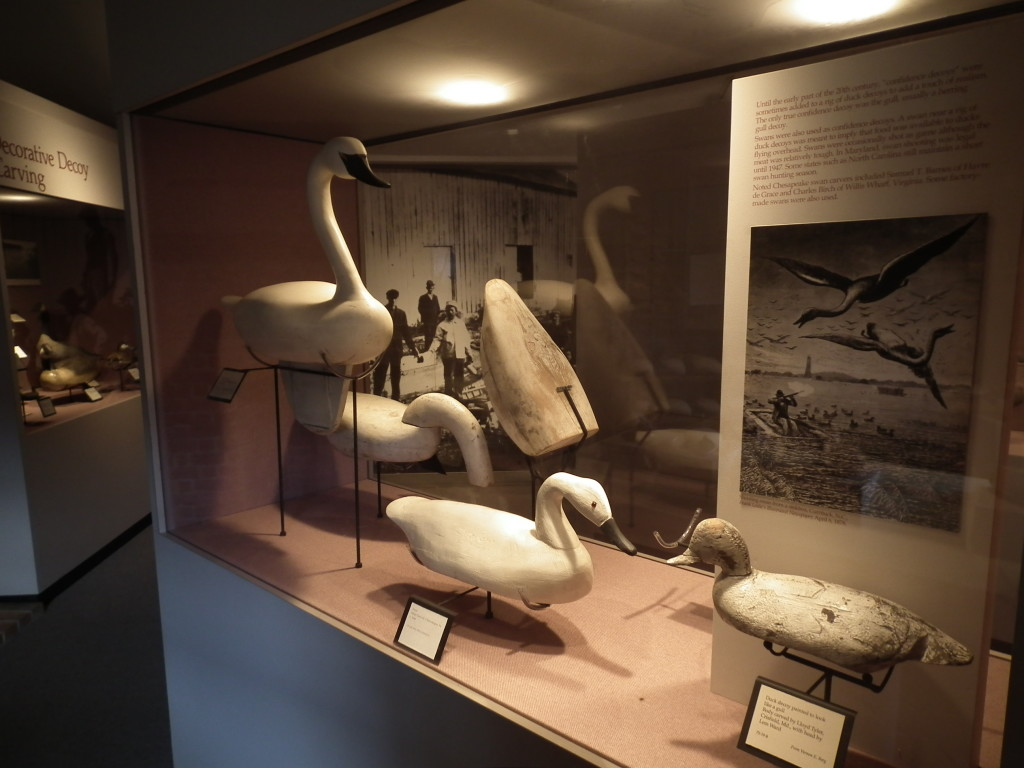 The waterfowl building at the Chesapeake Bay Maritime Museum has an impressive collection of carvings and decoys.  THE CHESAPEAKE TODAY photo