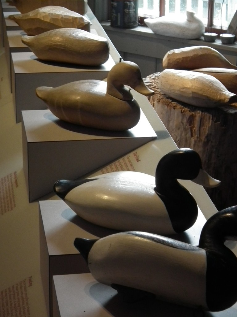 Get your ducks in a row - important to have decoys ready as hunting season approaches. THE CHESAPEAKE TODAY photo