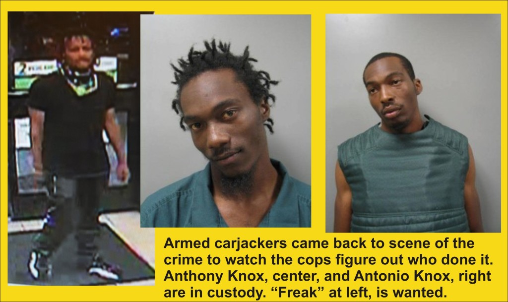 Dumb and Dumber in Armed Carjacking Nabbed