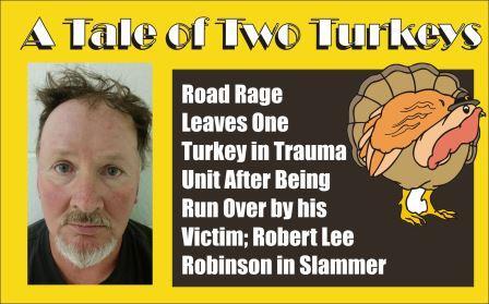 A Tale of Two Turkeys in Road Rage