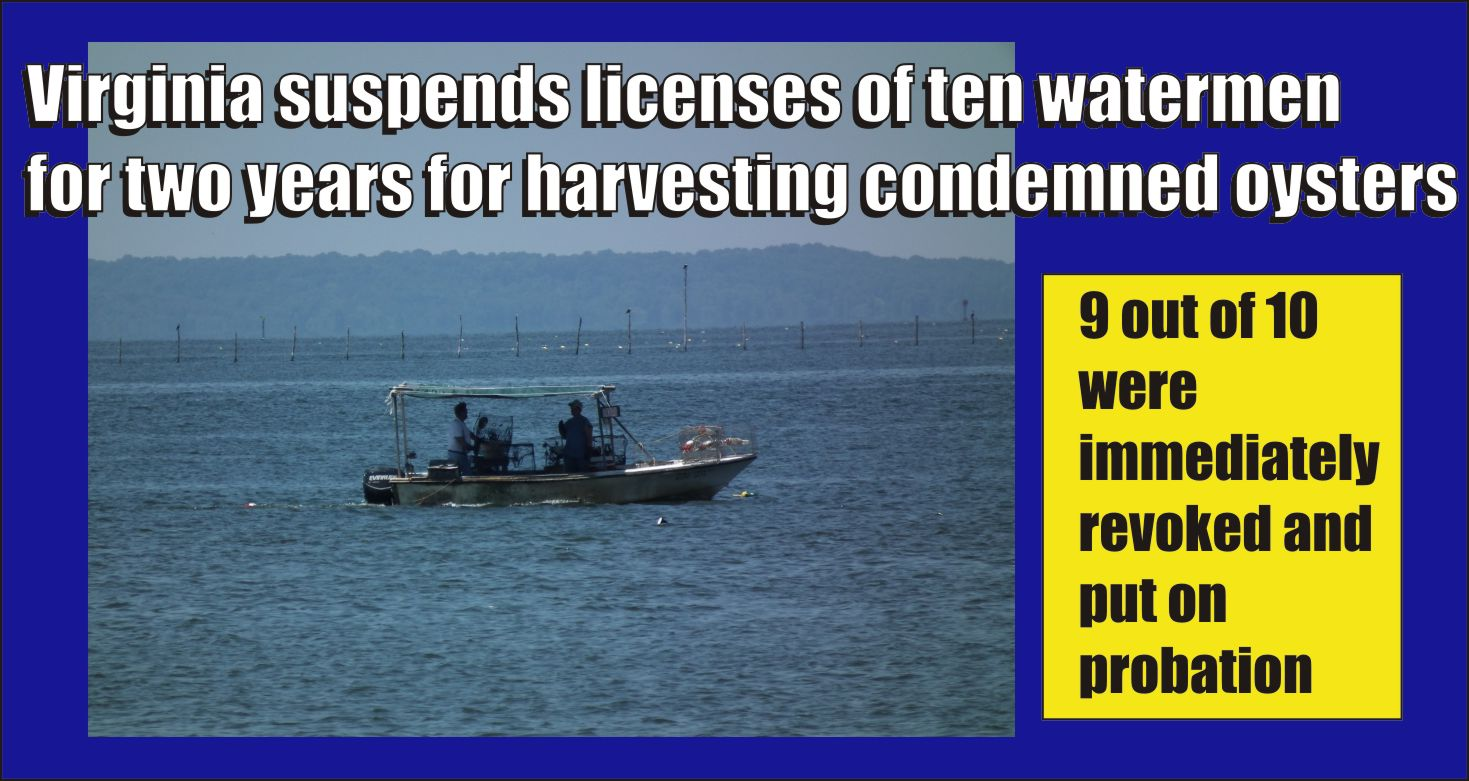 Virginia revokes ten commercial watermen s licenses and for Virginia fishing license online