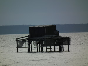 A duck blind is ready for the boat to slide underneath carrying hunters, trusty retriever and supplies to ward off the cold. THE CHESAPEAKE TODAY photo